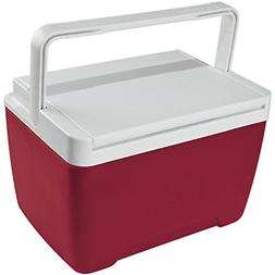 Personal Cooler Food Ice Chest Lunch Box Small Picnic Campin