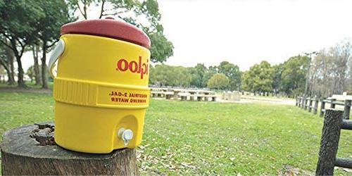 Igloo Gal Yellow/Red