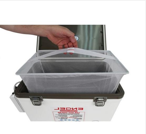 NEW PERSONAL LIVE BAIT COOLER