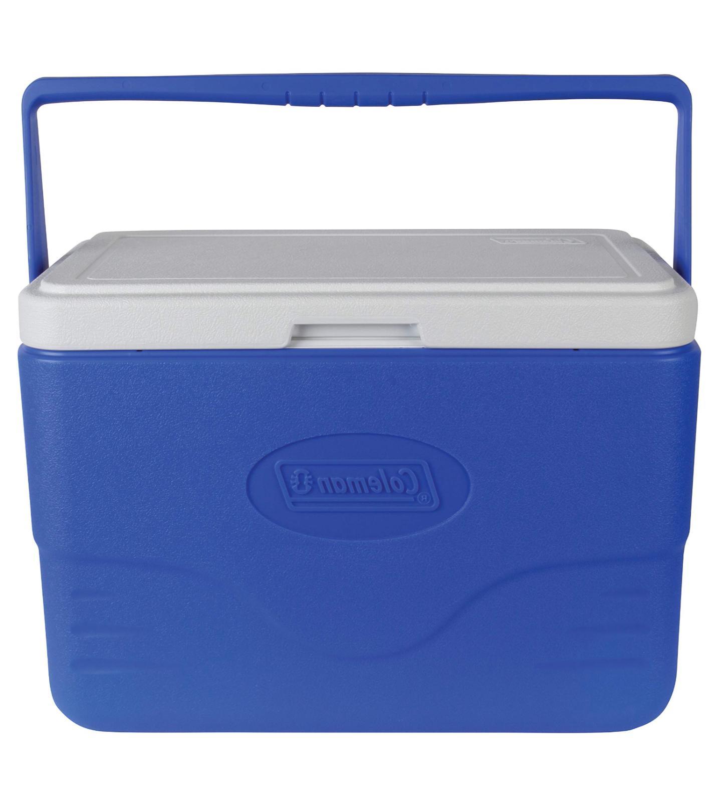 summer item 28 quart cooler with bail